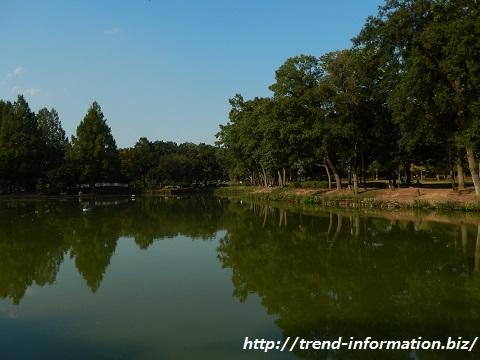 上尾丸山公園にある釣りができる池