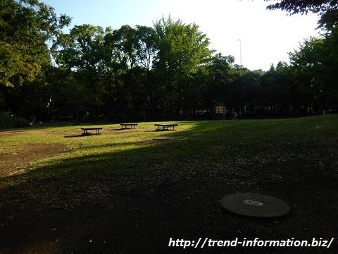 都立赤塚公園のBBQ場