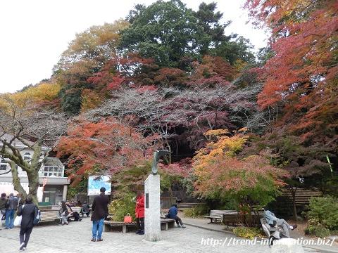 高尾山駅の紅葉スポット