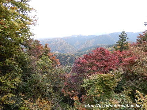 高尾山の絶景ポイント