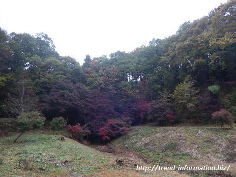 八王子城跡の紅葉